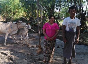 ン・サン・モウさん夫婦と大切な家畜