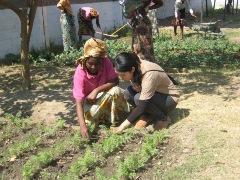 ボランティアさんとガーデニングを行う筆者(右)。玉ねぎ、にんじん、白菜などを育てています