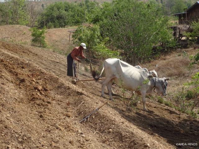 自らの土地で土堤を実践